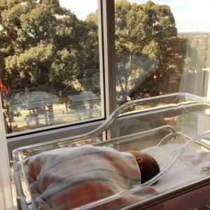 仍在医院,刚出生就有美景看!