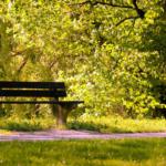 都市绿地的心理学