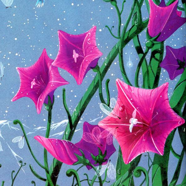 Flower_of_life-f